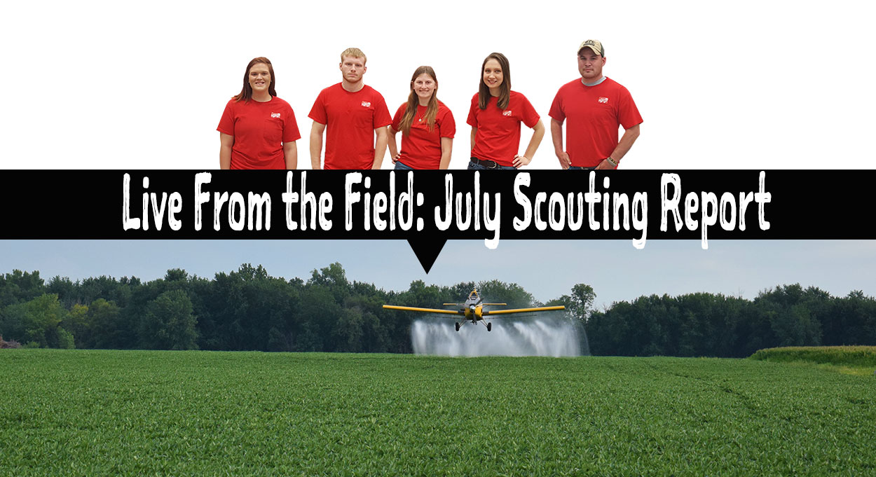 Eldon-C-Stutsman-Inc-Live-From-the-Field-July-Scouting-Report