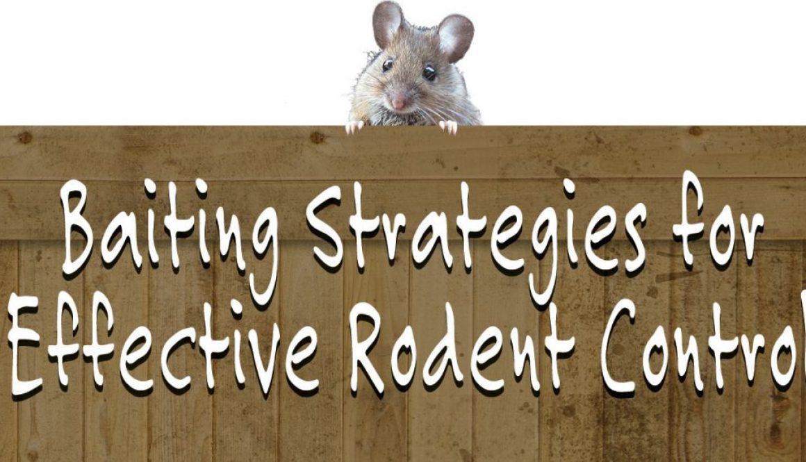 eldon-c-stutsman-inc-baiting-strategies-for-rodent-control