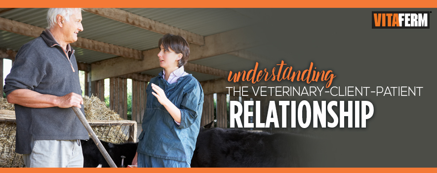 vet dating a client New clients client information page: new clients specialty services and a veterinary technician will meet with you to review your pet's history.