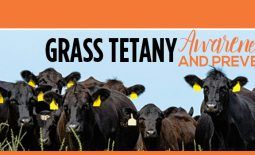 Eldon-C-Stutsman-Inc-VitaFerm-Grass-Tetany-Awareness-and-Prevention