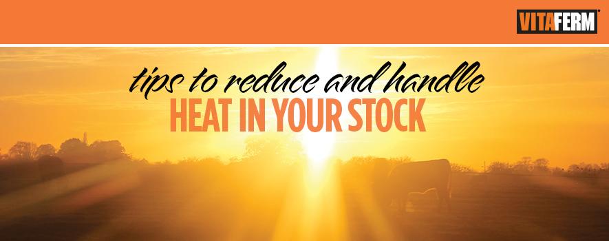 Eldon-C-Stustman-Inc-Vitaferm-Heat-SureChamp-Climate-Control-HeatStress