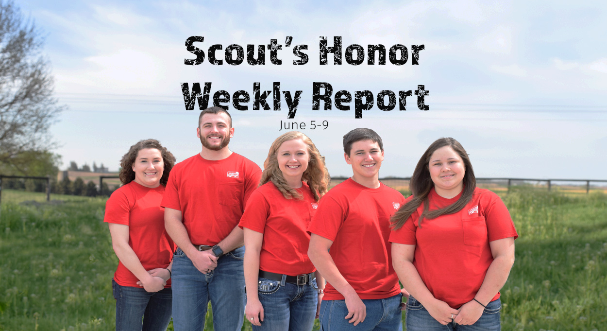 Eldon-C-Stutsman-Inc-Scouts-Honor-Week-4