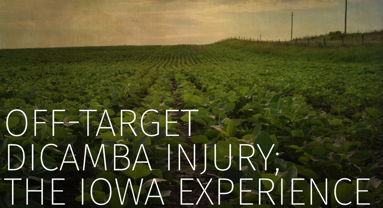 Eldon-C-Stutsman-Inc-Off-Target-Dicamba-Injury-The-Iowa-Experience