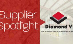 Eldon-C-Stutsmans-Inc-Supplier-Spotlight-Diamond-V
