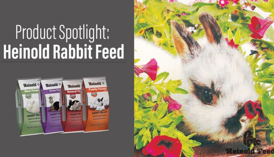 Eldon-C-Stutsman-Inc-Product-Spotlight-Heinold-Rabbit-Feed