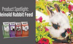 Eldon-C-Stutsman-Inc-Product-Spotlight-Heinold-Rabbit-Feed