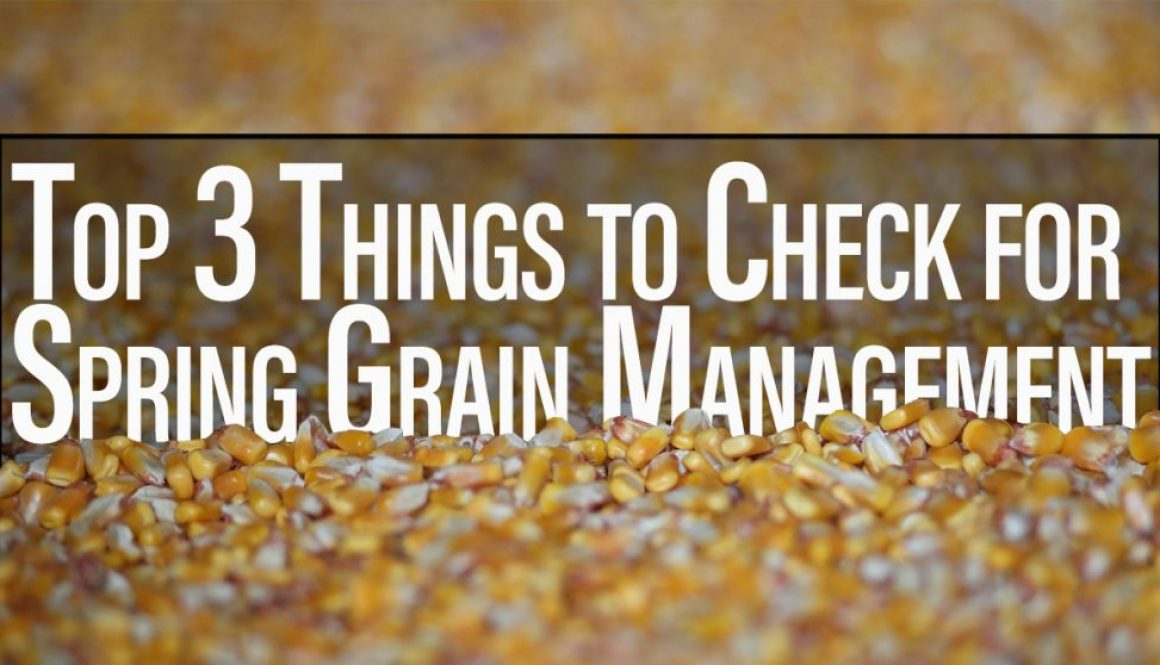 Eldon-C-Stutsman-Inc-Spring-Grain-Management