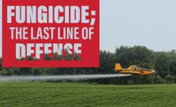 Eldon-C-Stutsman-Fungicide;-the-last-line-of-defense
