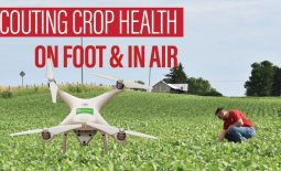 Eldon-C-Stutsman-Inc-Scouting-Crop-Health-On-Foot-&-In-Air