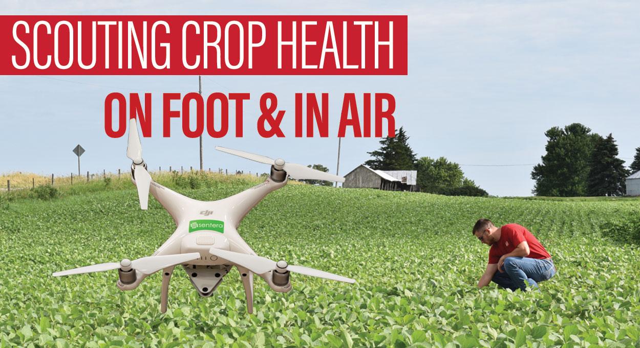 Eldon-C-Stutsman-Inc-Scouting-Crop-Health-On-Foot-&-In-Air