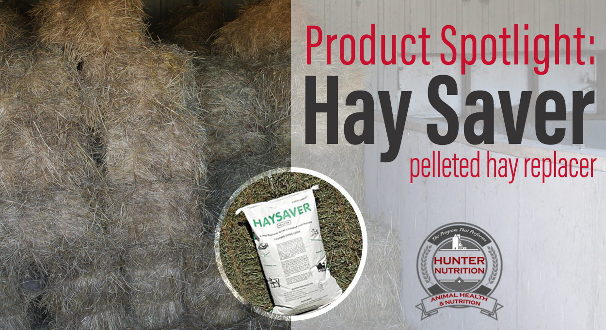 Eldon-C-Stutsman-Inc-Product-Spotlight-Hay-Saver