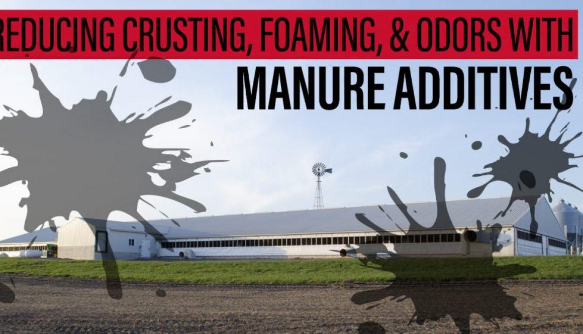 Eldon-C-Stutsman-Inc-Reducing-Crusting-Foaming-&-Odors-with-Manure-Additives