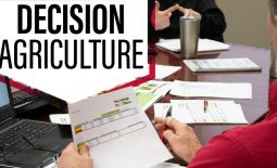 Eldon-C-Stutsman-Inc-Decision-Ag