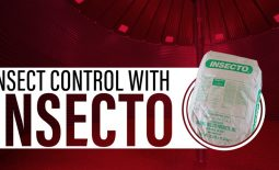 Eldon-C-Stutsman-Inc-Insect-Control-with-INSECTO