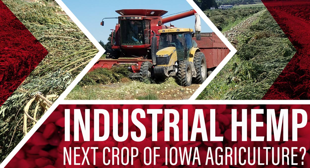 Eldon-C-Stutsman-Inc-Industrial-Hemp-Next-Crop-of-Iowa-Agriculture