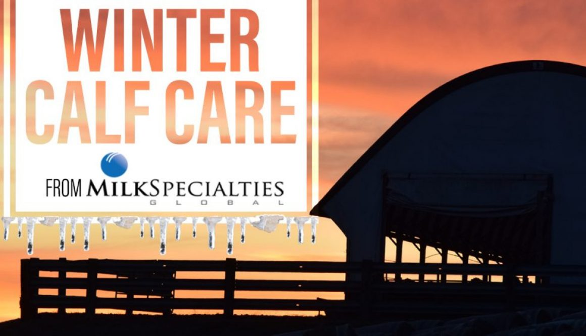 Eldon-C-Stutsman-Inc-Winter-Calf-Care