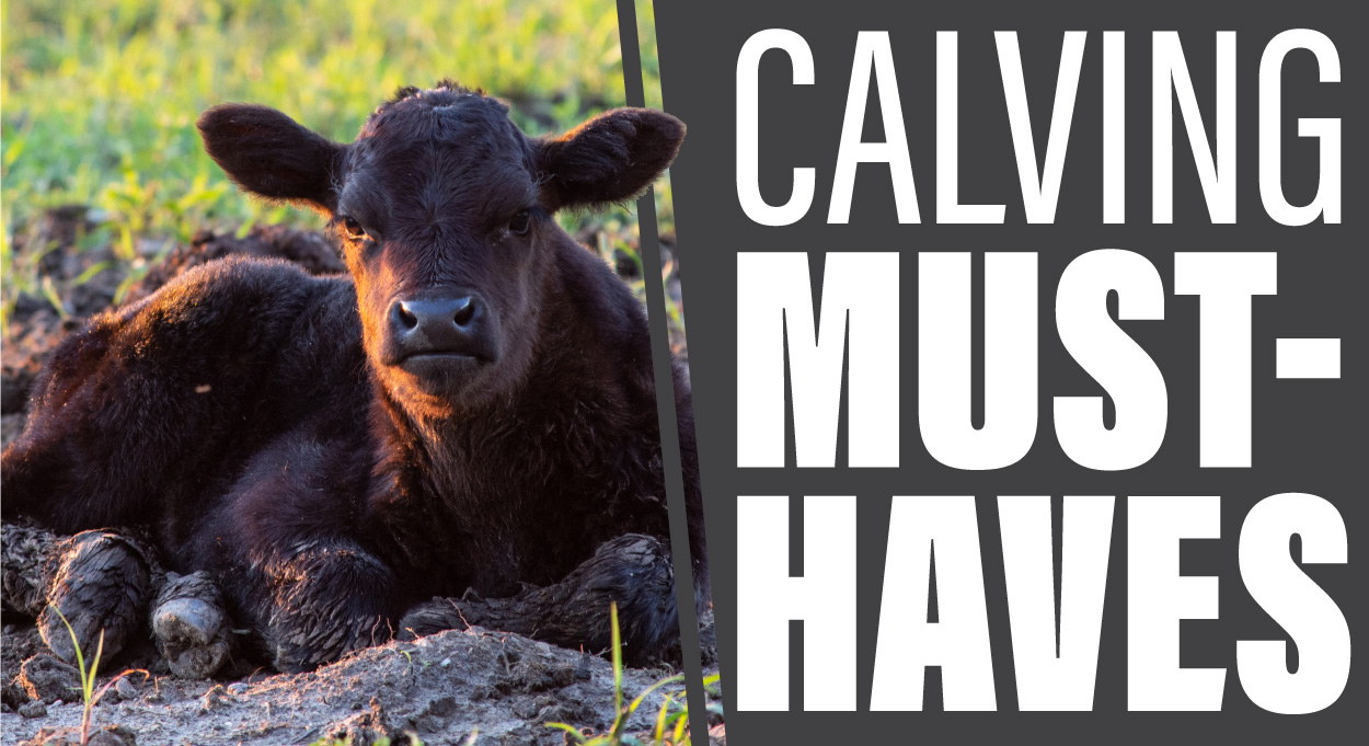 Eldon-C-Stutsman-Inc-Calving-Must-Haves