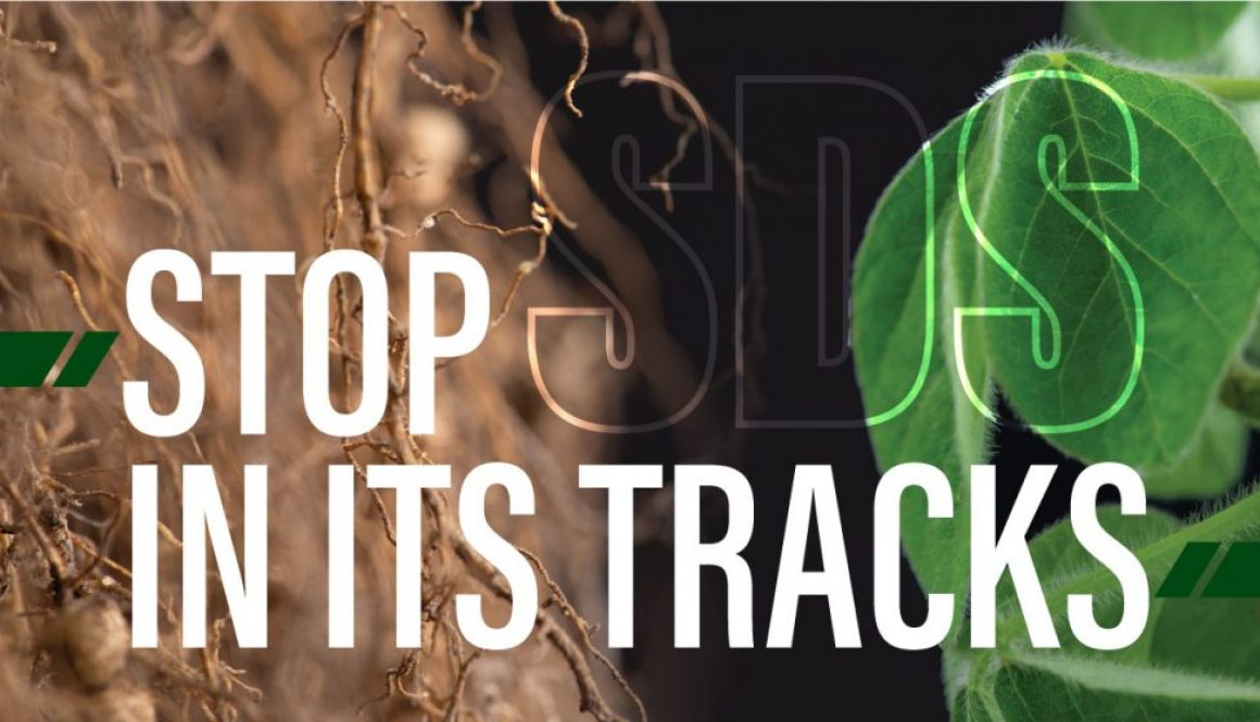 Eldon-C-Stutsman-Inc-Stop-SDS-in-its-Tracks