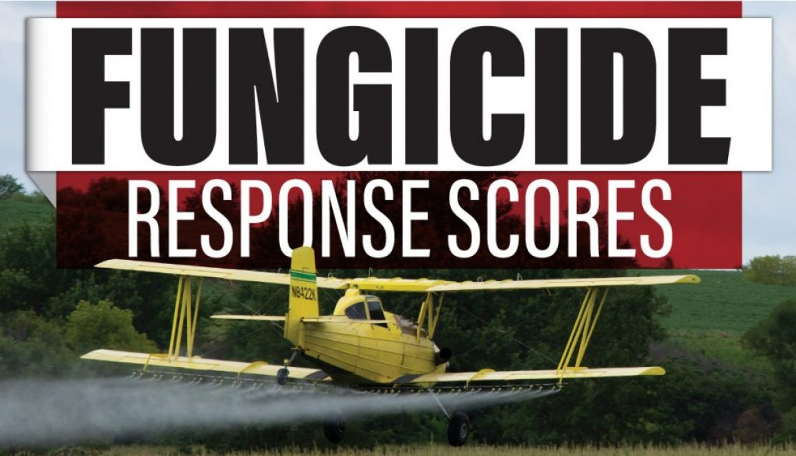 Eldon-C-Stutsman-Inc-Fungicide-Response-Scores