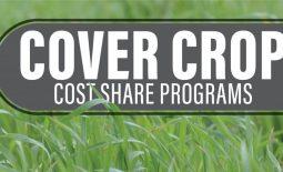 Eldon-C-Stutsman-Inc-Cover-Crop-Cost-Share-Programs