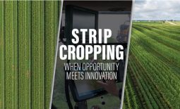 Eldon-C-Stutsman-Inc-Strip-Cropping-When-Oppotunity-Meets-Innovation