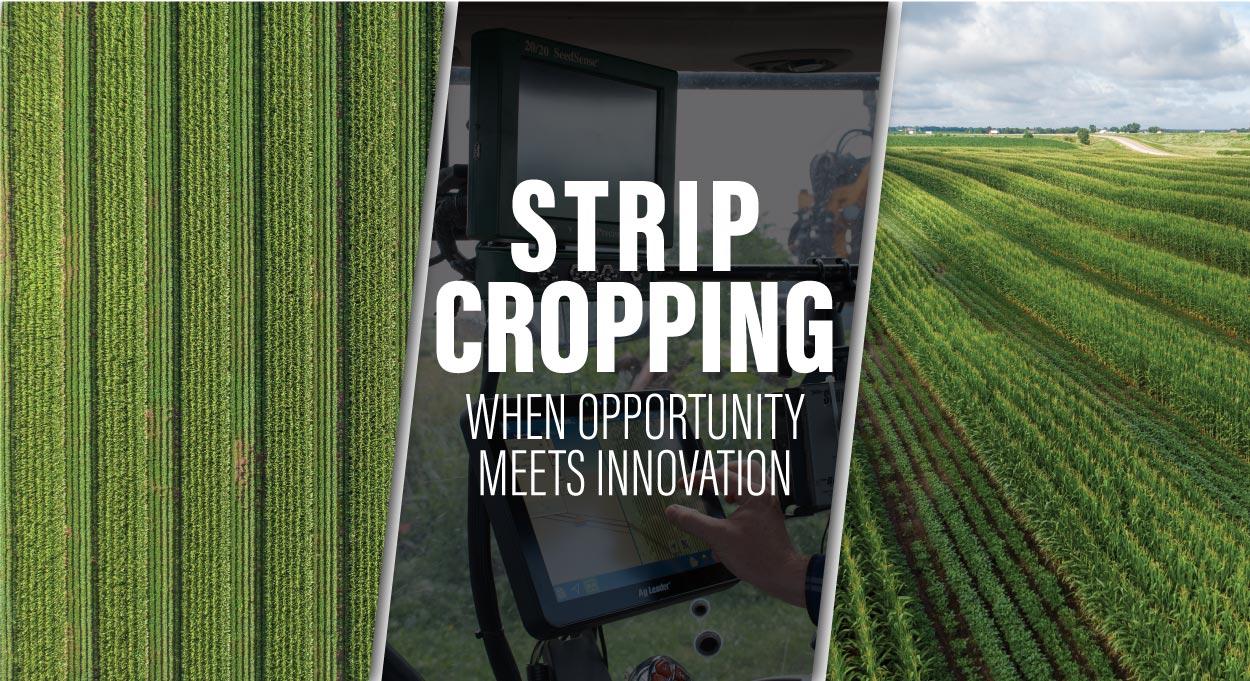 Eldon-C-Stutsman-Inc-Strip-Cropping-When-Oppotunity-Meets-Innovation