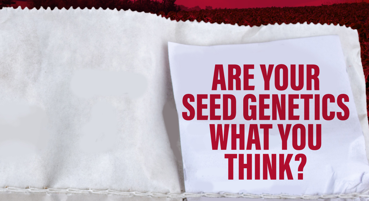 Eldon-C-Stutsman-Inc-Are-Your-Seed-Genetics-What-You-Think